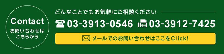 お問い合わせはこちらから (TEL)03-3913-0546 (FAX)03-3912-7425